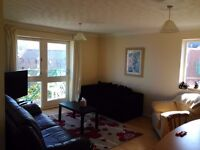 two bedroom apartment for rent, Swansea Marina and fully furnished will suit a professional person