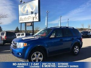 2012 Ford Escape XLT   Sunroof   Heated Seats   Leather Interior