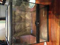 Reptile Home with glass and screening
