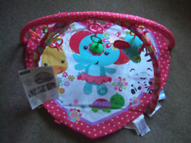 NEW Fisher Price Lay & Play