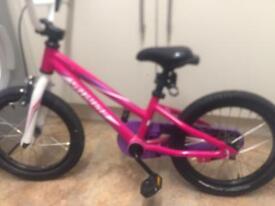 Pink sperlised bike