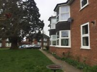 Council Exchange - 1 bed for 2 or 3 bedroom in Ipswich or surrounding