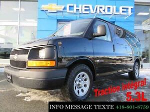 2013 CHEVROLET EXPRESS CARGO 1500 TRACTION INTEGRALE