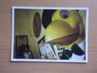 CAPTAIN CANARY ON THE BALL EXHIBITION AT NORWICH CASTLE. EXCELLENT CONDITION POSTCARD.