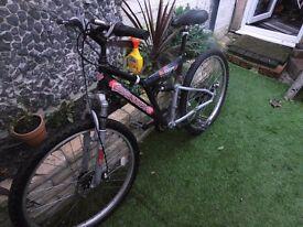 Shockwave mountain bike
