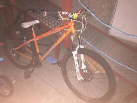 Specialized dirt jumper.