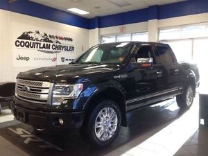 2014 Ford F-150 Platinum Leather Loaded Alloy Wheels
