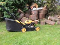 Garden Handyman, Garden Services, Tree Felling, Hedge Trimming, Grass Cutting, Strimming etc.