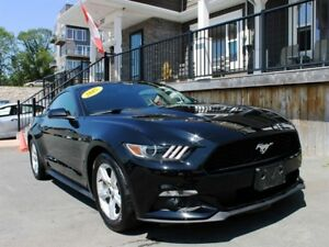 2015 Ford Mustang Fastback / 3.6L V6 / 6 spd / RWD **Mint!**
