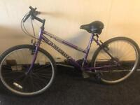 Girls/ladies purple bike