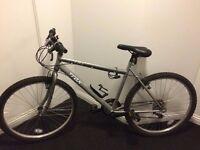 Unisex silver bike