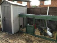 14 chickens 1 cock. Large 6x4 chicken house and 8x3 chicken run with door very large drinker
