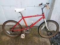 Kids retro bike