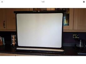 Blitz projector screen