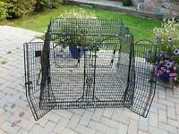 Car cage for dogs