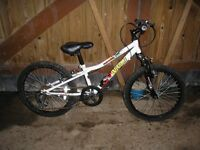 Boys Apollo Wham Bike