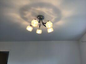 Ceiling light fittings (2)