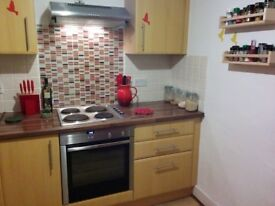 Large 1 bed flat in Havant center