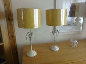 Two lovely lamps