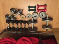 Dumballs various weights