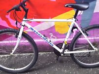 Shogun Trailbreaker 2 mountain bike - 21 speed