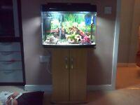 Fish tank 64 liters