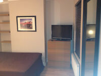 SHORT OR LONG TERM LARGE DOUBLE ROOM IN CLEAN AND QUIET HOUSE, 3 MIN WALK TOTTENHAM HALE TUBE, CLEAN