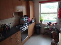 Double Room in Large Modern Flat (with own bathroom)