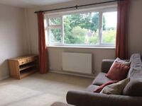 Bright & spacious 1 bedroom flat for rent in Ewell Village