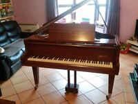 Powerful Danemann 5ft Baby Grand | Free NI Delivery