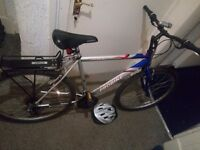 """PROBIKE """"26"""" in good condition (comes with """"New"""" pair of Tyres)"""