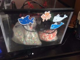 Fish tank with gravel and filter