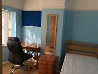 Large single room to let