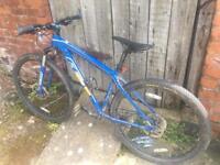 Felt seventy mountain bike. Quality bike. Hardly used
