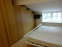 Bills included. Lovely Room in great Flat available in Lovely village. Suit professional.