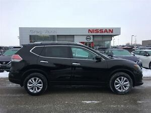 2015 Nissan Rogue SV Cambridge Kitchener Area image 6