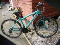 APOLLO ENTICE LADIES MOUNTAIN BIKE, LOVELY BIKE, GREAT CONDITION, ABSOLUTE BARGAIN £40, CAN DELIVER