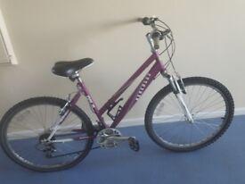Ladies bike needs some tlc