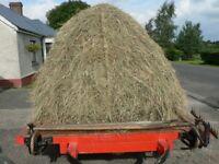 Hay Shifter