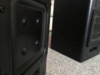 APM-22ES-MK2 flat cone loudspeakers
