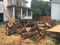 Fireplace Wood for sale / Bois pour foyer à vendre