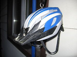 Bike Helmet Bird Feeder London Ontario image 2