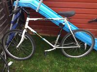 1980's Raleigh mountain bike