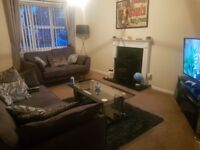 Spare room available in spacious semi-detached house