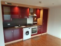 Unfurnished Modern 1 Bed Apartment Available Now!!!