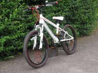 Claud Butler Torment Junior Mountain Bike 7-10y