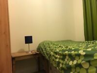 Post Grsduate or Young Professional for Room - NE8
