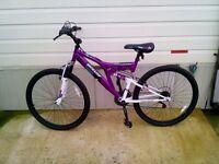 """26"""" dunlop mountain bike"""