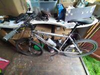 "Claud Butler Mountain Bike (Men's 20"" Frame, 26"" Wheels)"