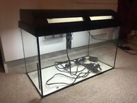 Fish tanks and other items